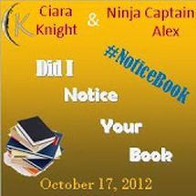 Did I Notice Your Book Blogfest!